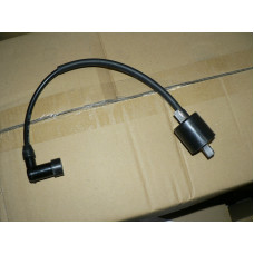 (11)  Ignition Coil