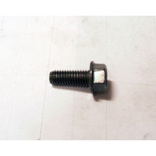 (16)  Hex Washer Face Bolt, M6x12