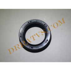 (09)  oil seal 2012 and up 96100-284207