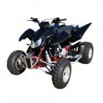 DRX 450 Sport