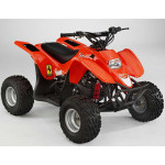DRX Atv Parts 2004-2007