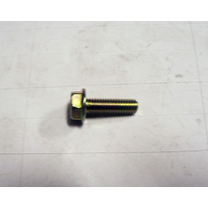 Hex Washer Face Bolt, M6x20