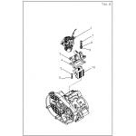 Carburetor and Reed